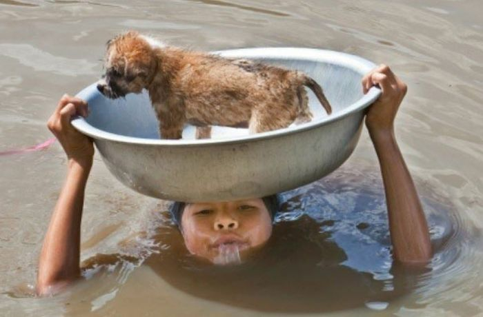 people-doing-amazing-things-for-animals-020714