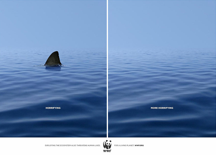 Great Creative Human & Animal Rights Campaigns