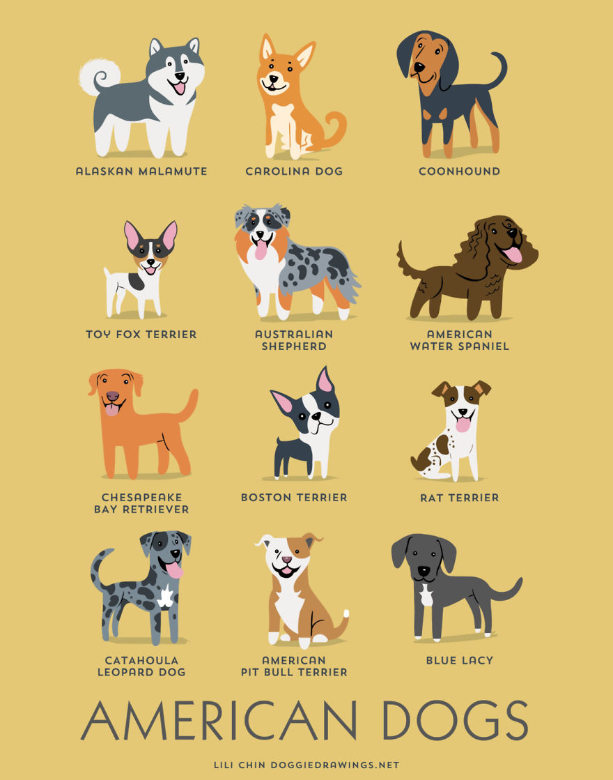 dogs-of-the-world-posters_24094_1