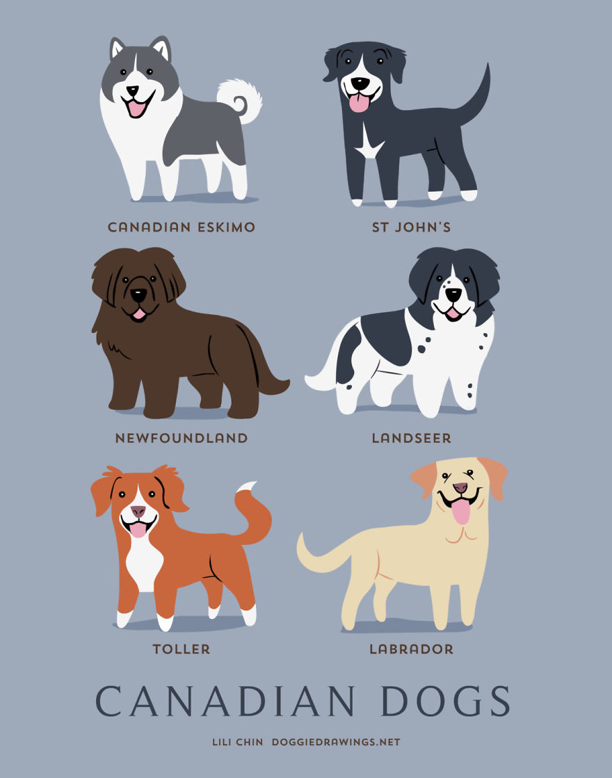 dogs-of-the-world-posters_24094_10