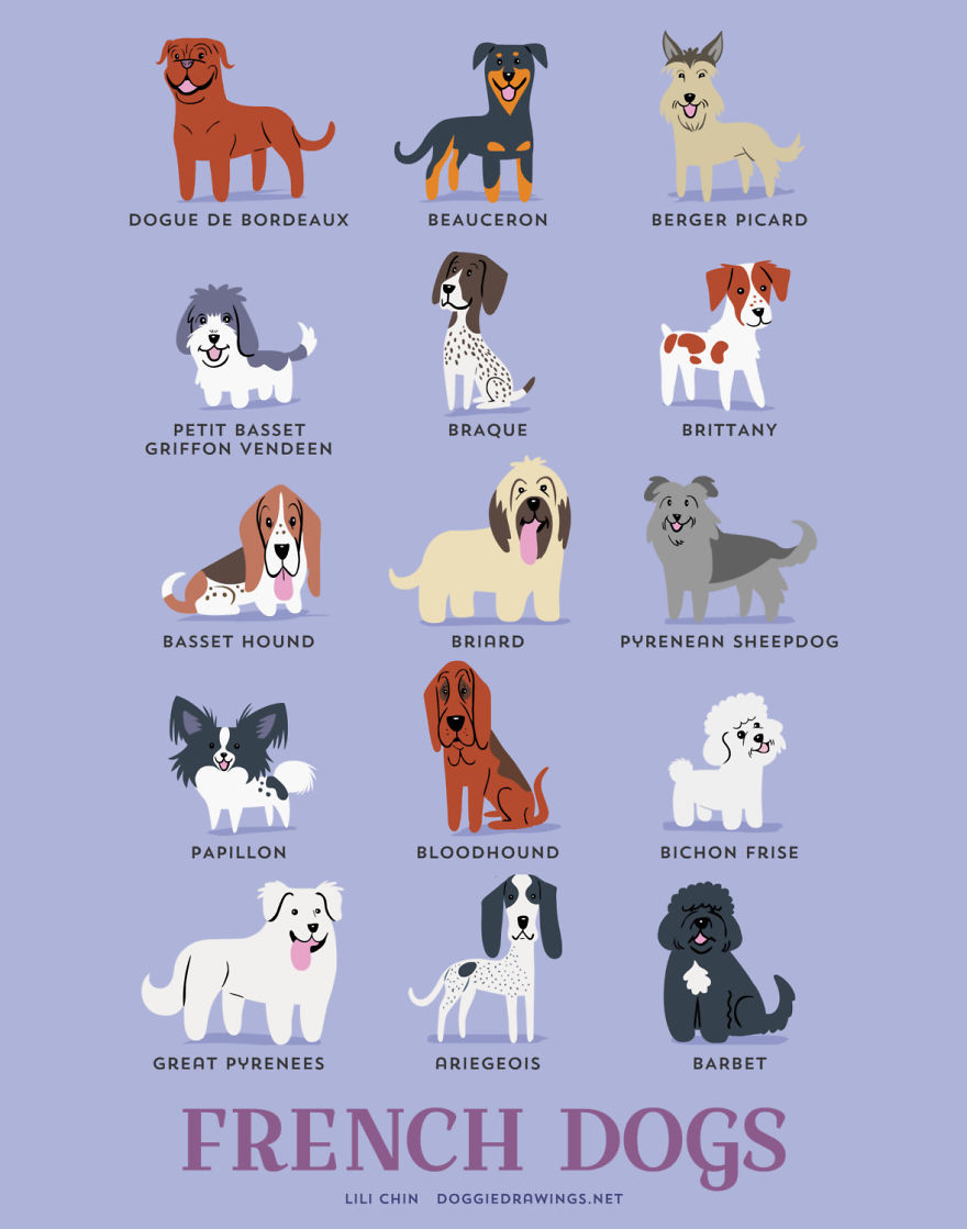 dogs-of-the-world-posters_24094_12