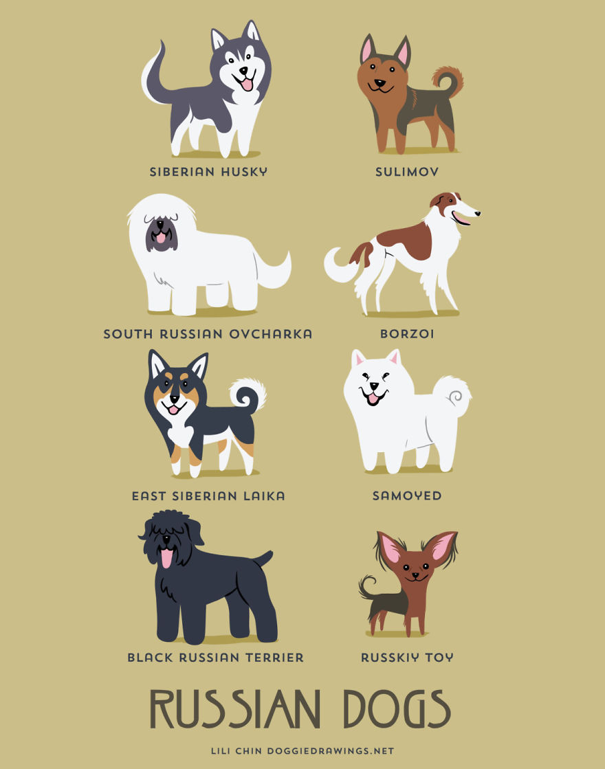 dogs-of-the-world-posters_24094_13