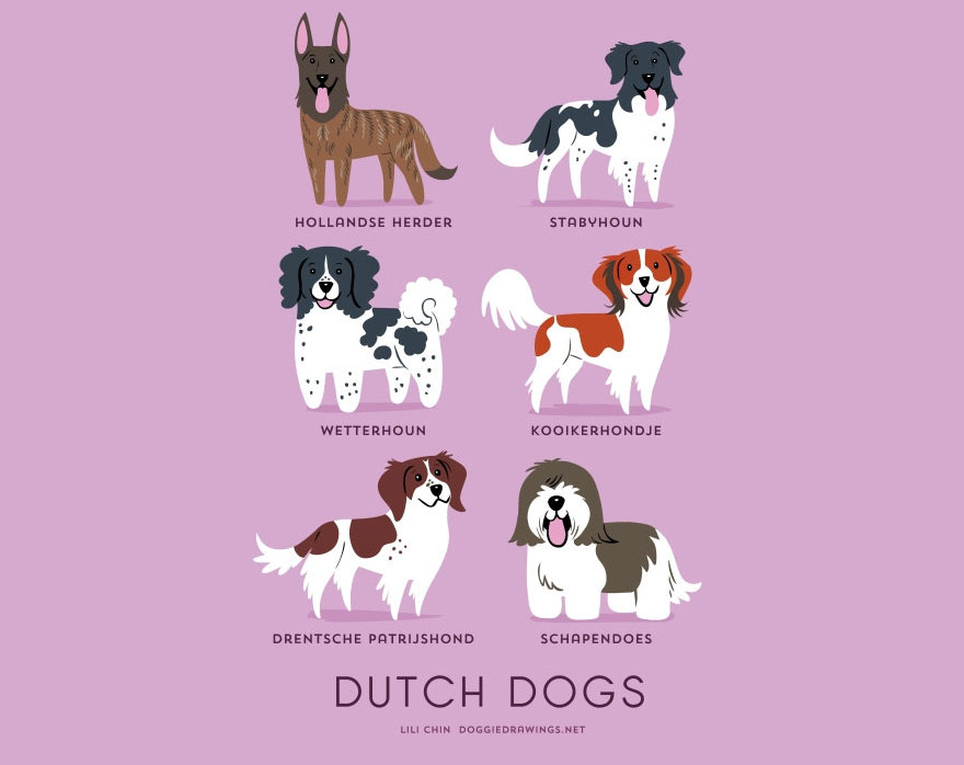 dogs-of-the-world-posters_24094_15