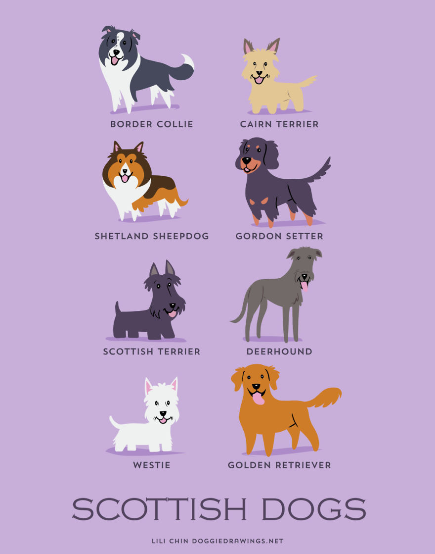 dogs-of-the-world-posters_24094_16