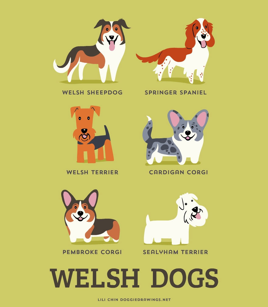 dogs-of-the-world-posters_24094_17