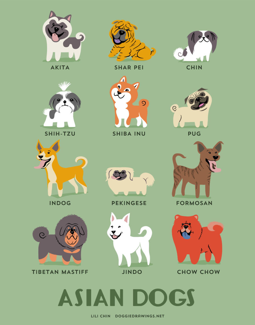 dogs-of-the-world-posters_24094_2