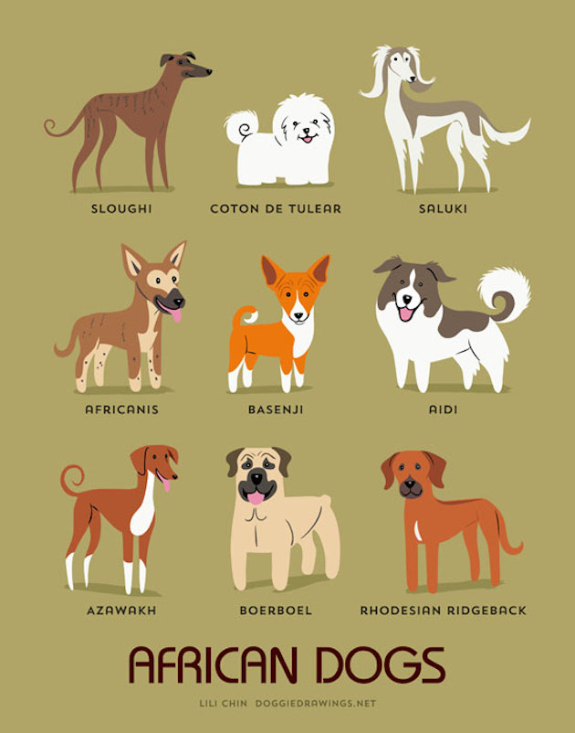 dogs-of-the-world-posters_24094_3