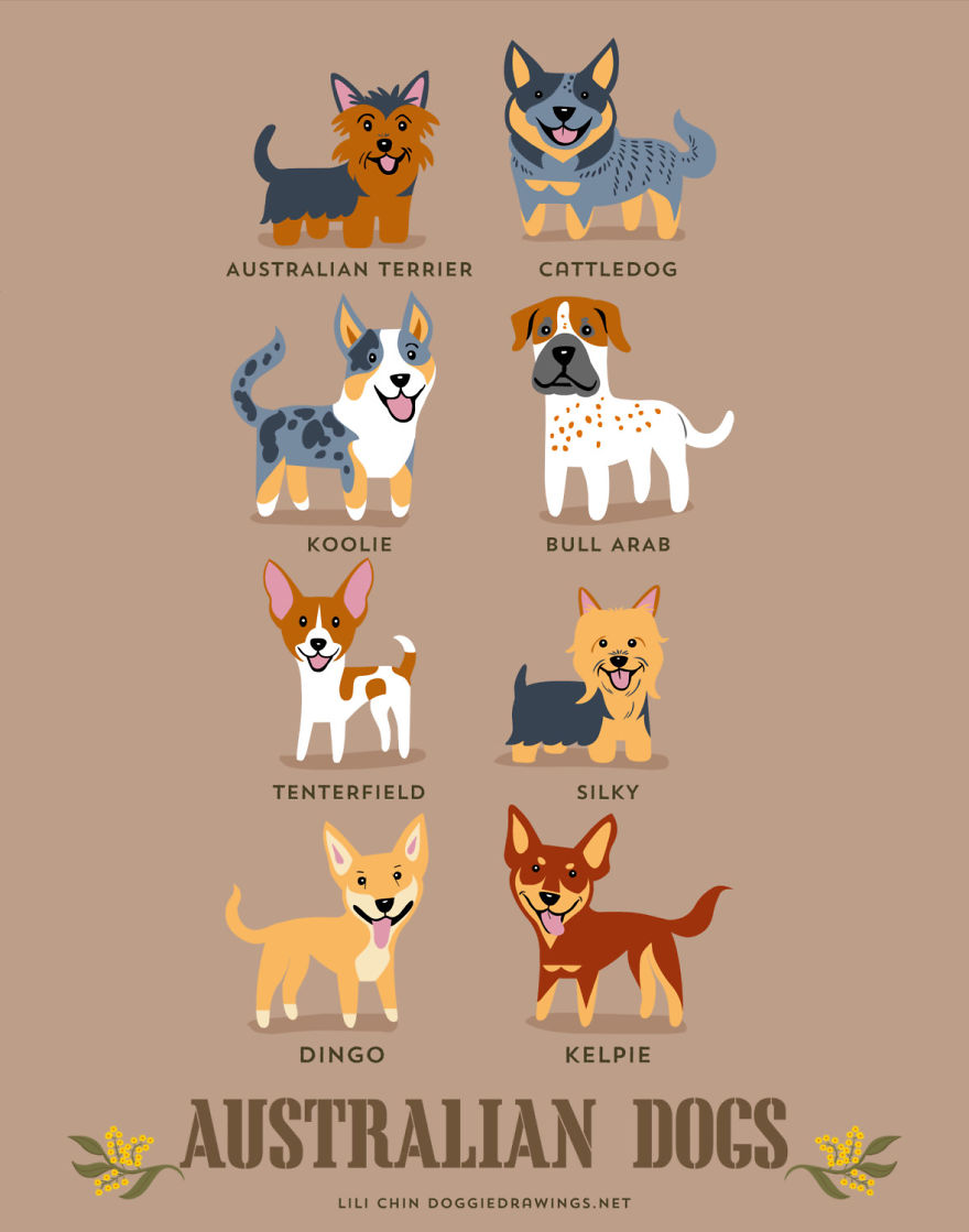 dogs-of-the-world-posters_24094_4
