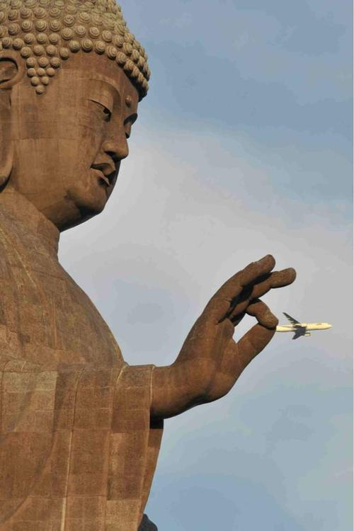 perfectly-timed-photos-300914_23