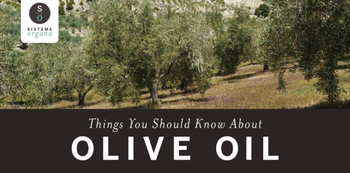 infographic_olives_281014fb