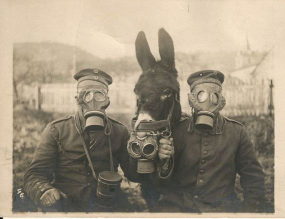 1916. Two German soldiers and their mule wearing gas masks in WWI, 1916
