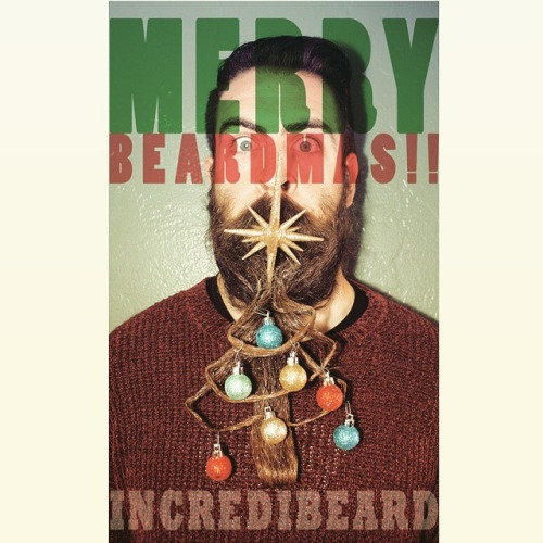 incredible-beards-of-incredibeard-19