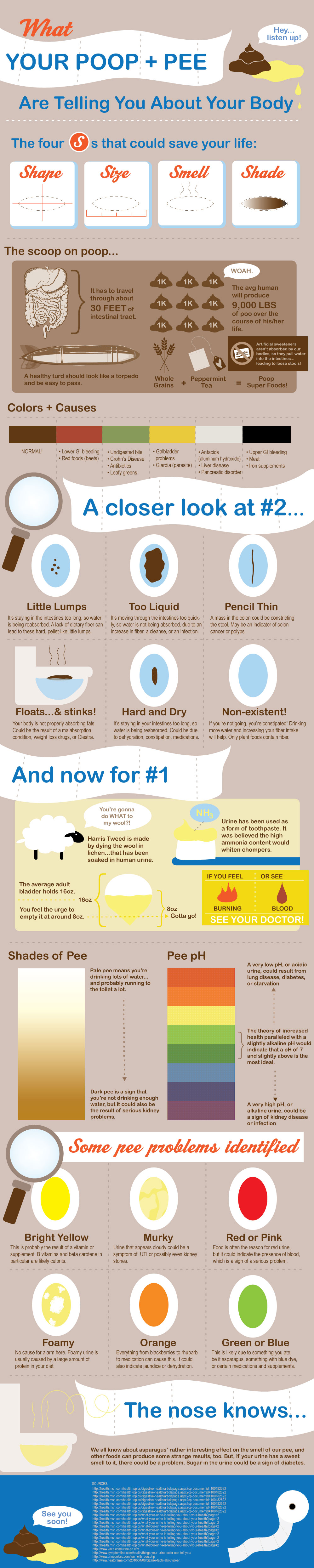 what_your_poop_and_pee_tell_about_your_body_230115b