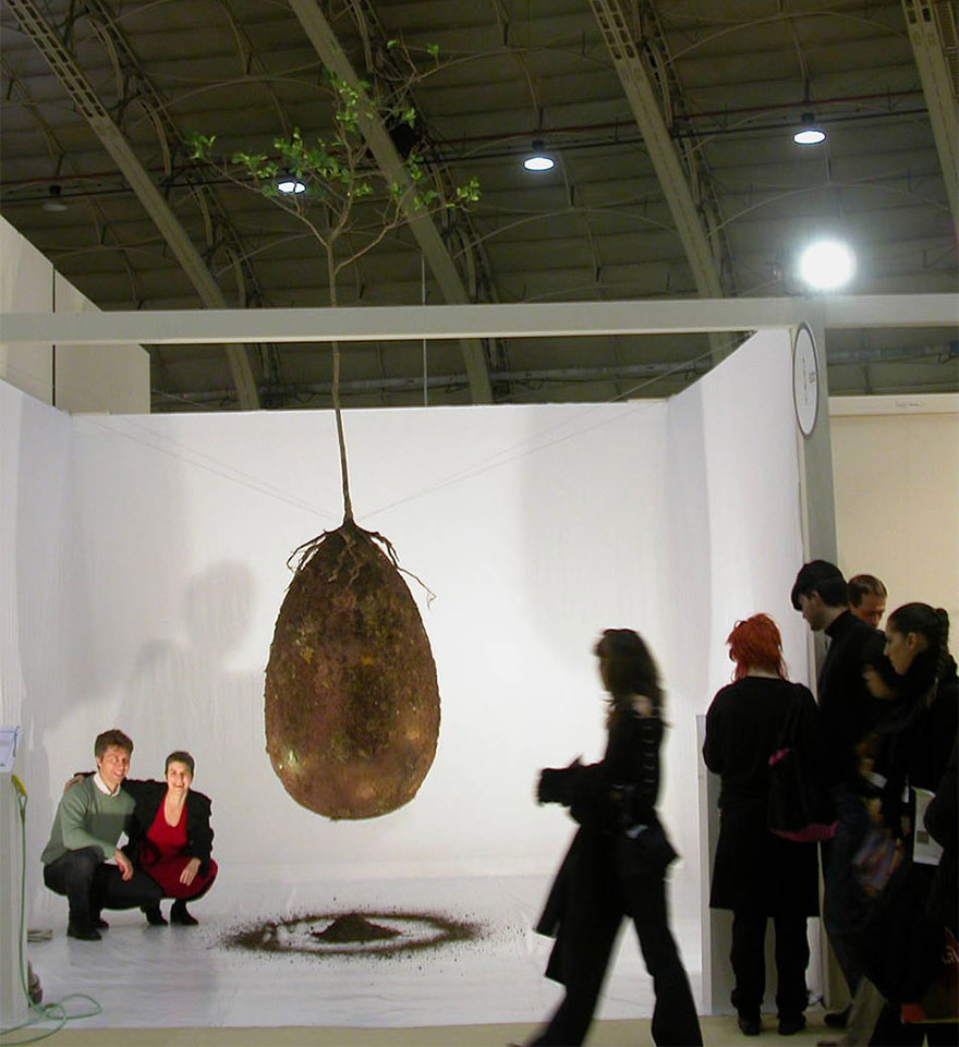 biodegradable-burial-pod-memory-forest-capsula-mundi-7b