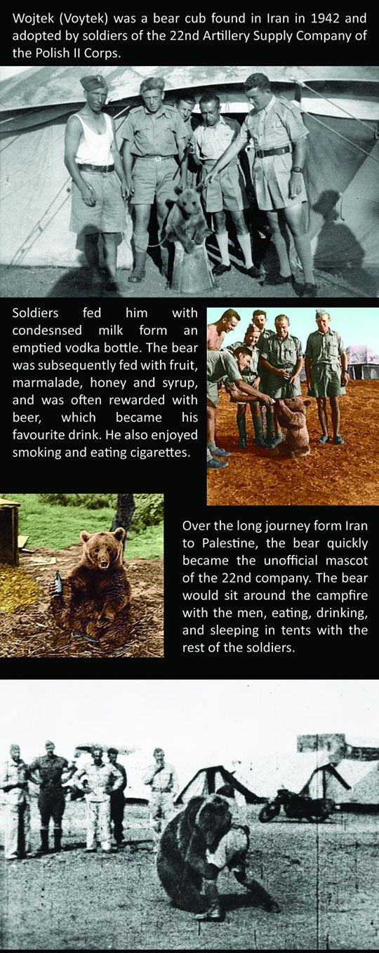 woytek_the_soldier_bear_1