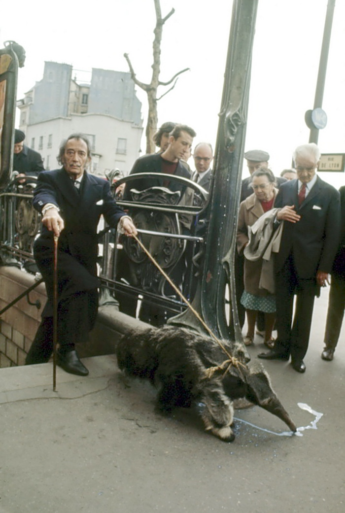 1969 Salvador Dali taking his anteaters for a walk in Paris