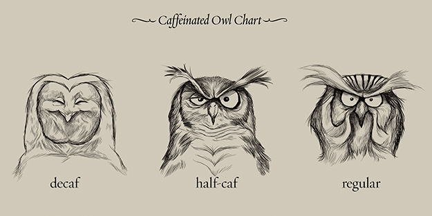 caffeinated-owls-fb