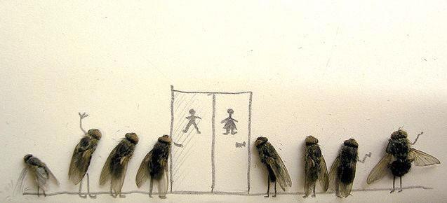 dead-fly-art7