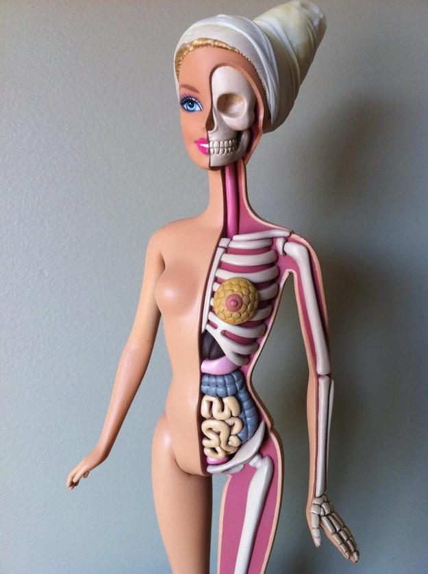 toys-anatomy-1c