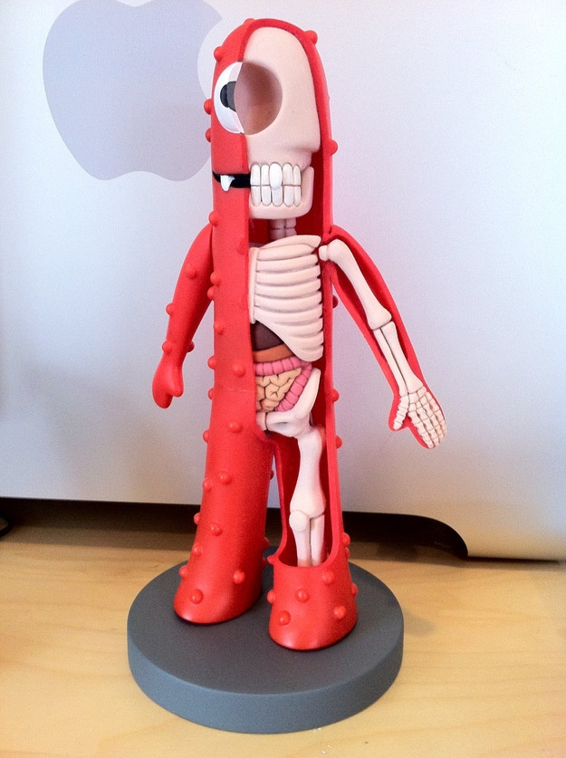 toys-anatomy-2