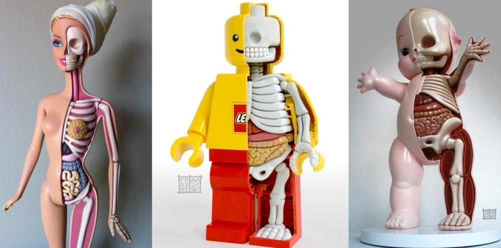 toys-anatomy-fb