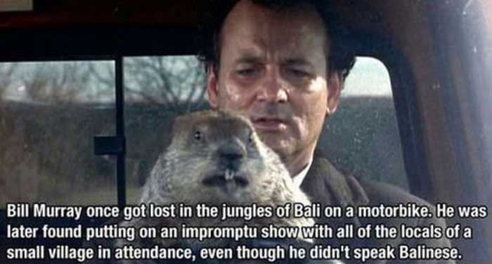 why-bill-murray-is-awesome_fb3