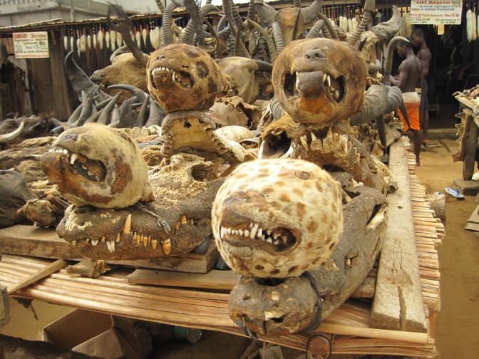 akodessewa-voodoo-fetish-market-togo-4c