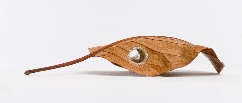 3d-leaf-crochet-2