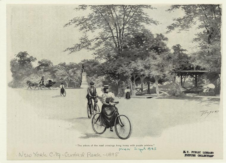 1895-the-arbors-of-the-road-crossings-hang-heavy-with-purple-wisteria-e28093-cyclists-in-central-park-sept-1895-munseys-magazine-lithographic-print-nypl (1)