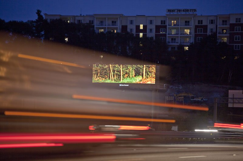 brian-kane-buys-digital-billboard-space-to-display-nature-photos-2
