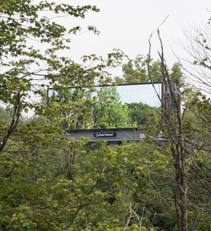 brian-kane-buys-digital-billboard-space-to-display-nature-photos-3