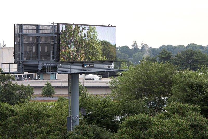 brian-kane-buys-digital-billboard-space-to-display-nature-photos-4