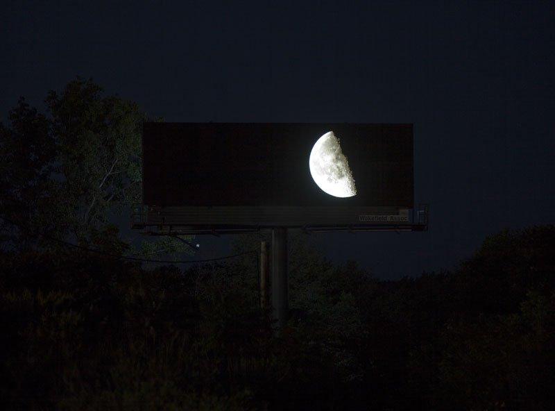 brian-kane-buys-digital-billboard-space-to-display-nature-photos-5