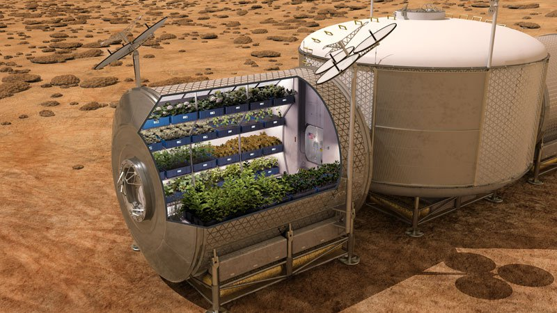 astronauts-on-iss-eat-veggies-grown-in-space-3