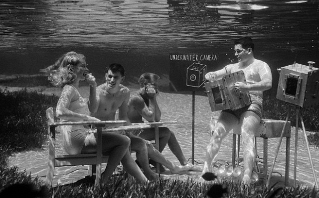 "06 Aug 1954, Silver Springs, Florida, USA --- Original caption: Next time your camera drops in the water, dive in after it and start snapping. Some wonderful pictures can be made underwater- if your camera is leakproof and you know the tricks of filming the fishes. At Silver Springs, Florida, where the water is ideal for submarine photography, Bruce Mozert, who's been an underwater shutterbug for 16 years, recently conducted a class in the art for a few friends. Multicolored fish and water plants, lighted dramatically by refracted rays from the sun, turned the underwater ""classroom"" into a shimmering world of beauty which the students were delighted to capture on film. United Press Staff Photographer Joe Schuppe took the plunge also and made these fish-eye views of the students learning frogman photography. --- Image by © Bettmann/CORBIS"
