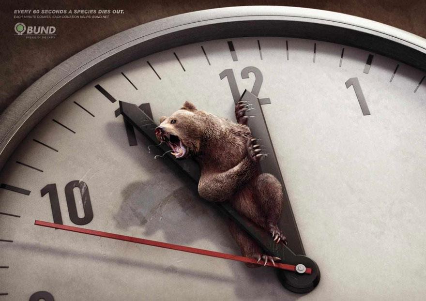 animal-abuse-5