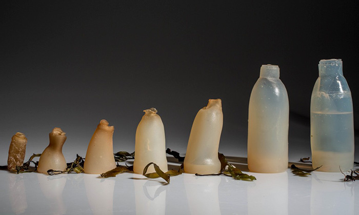 biodegradable-algae-water-bottle-ari-jonsson-0