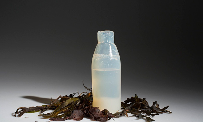 biodegradable-algae-water-bottle-ari-jonsson-0a