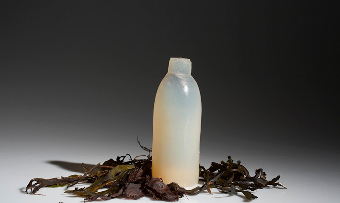 biodegradable-algae-water-bottle-ari-jonsson-0b