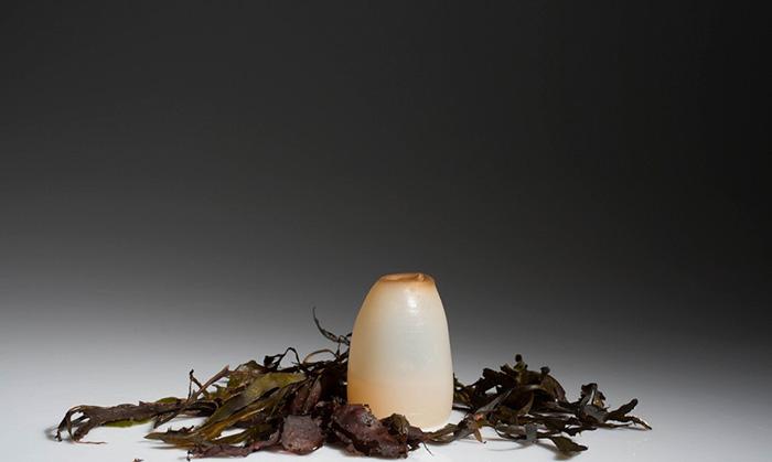 biodegradable-algae-water-bottle-ari-jonsson-0d
