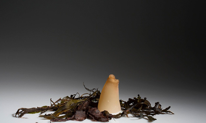 biodegradable-algae-water-bottle-ari-jonsson-0e