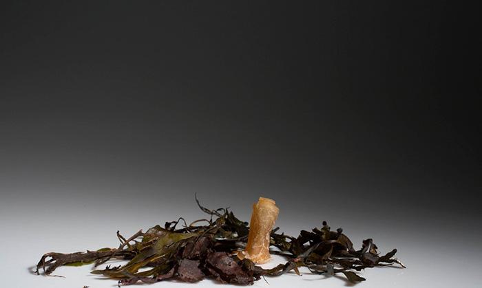 biodegradable-algae-water-bottle-ari-jonsson-0g
