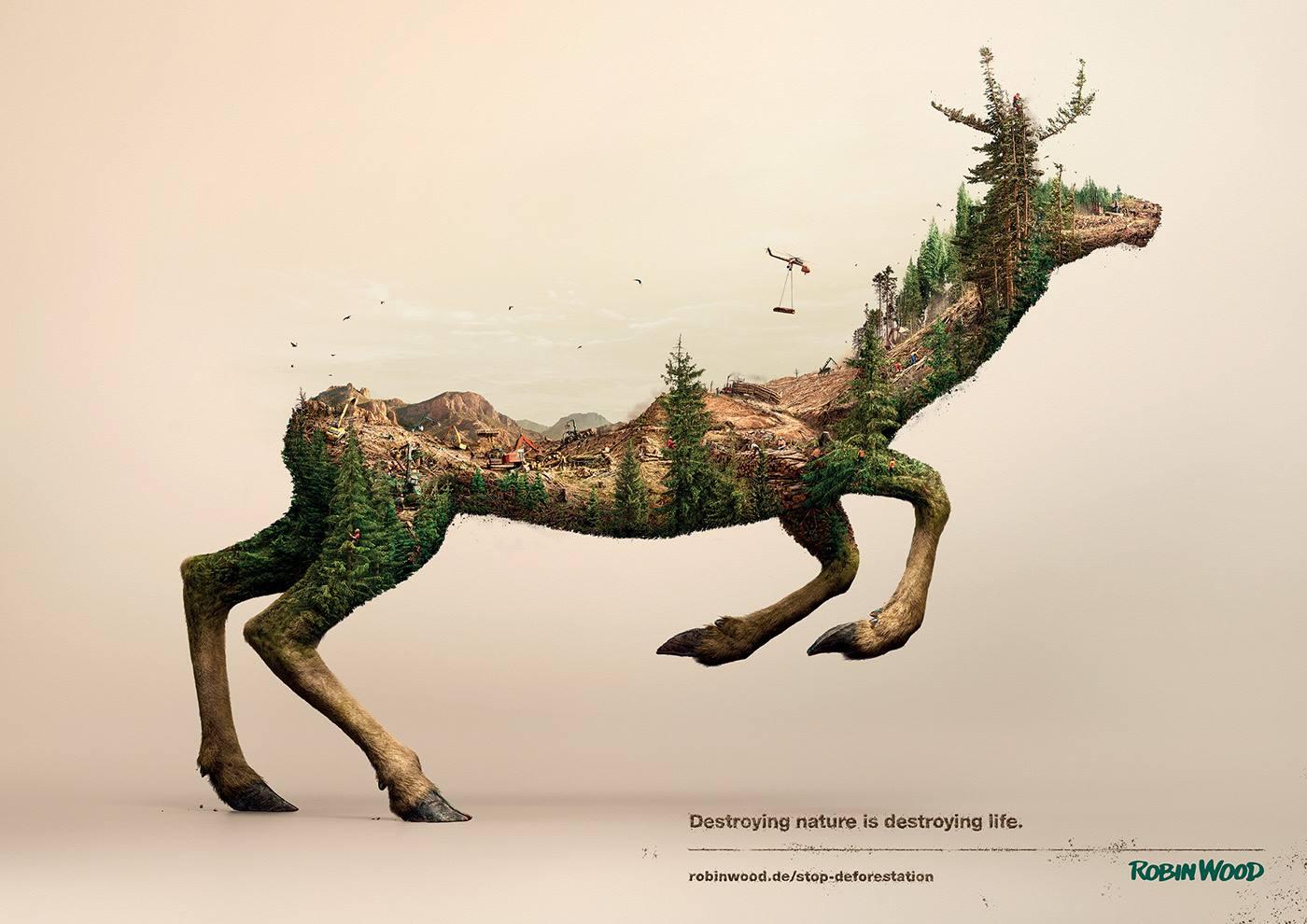 destroying-nature-robin-wood-3