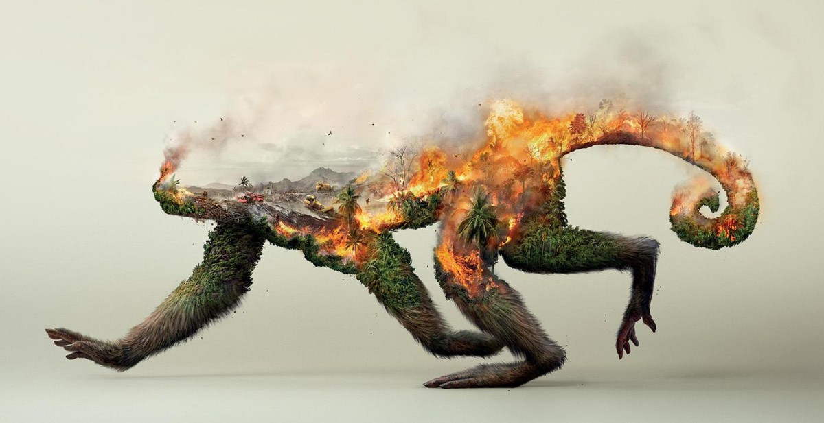 destroying-nature-robin-wood-fb