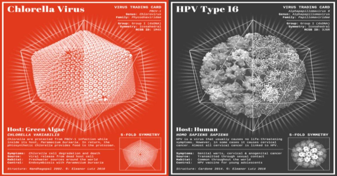 amazing-virus-trading-cards-fb3