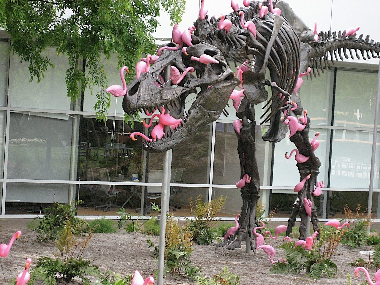 google-campus-dinosaur-attack-flamingos-1