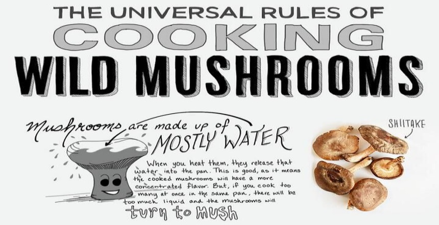 the-universal-rules-of-cooking-wild-mushrooms-fb