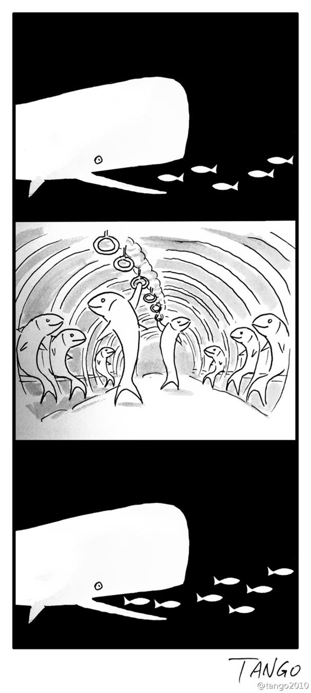 funny-comics-shanghai-tango-4