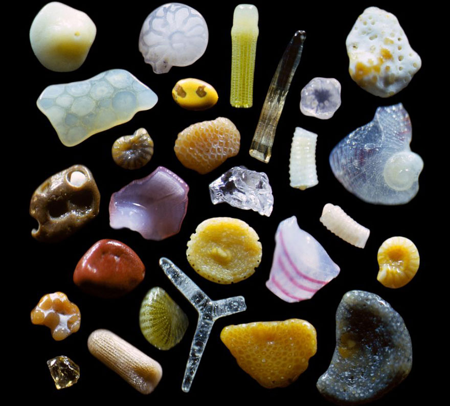 sand-grains-under-microscope-1