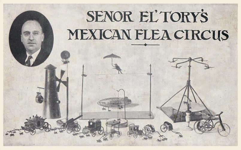 flea-circus-vintage